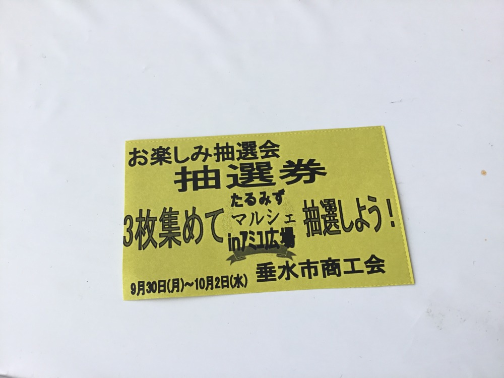 image_6483441 (2).JPG